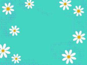 white-1150453_1280